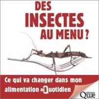 des-insectes-au-menus
